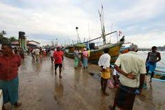 在马塔勒港的传染性的鲜鱼在斯里兰卡 库存图片