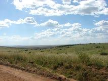 在马塞语玛拉的风景 免版税库存照片