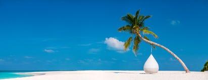 在马尔代夫的美丽的热带海滩 库存照片