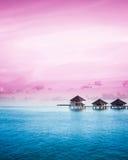 在马尔代夫海岛上的日落 免版税库存照片