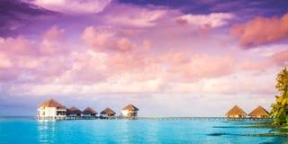 在马尔代夫海岛上的日落 库存照片