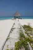 在马尔代夫海滩的树荫处 图库摄影