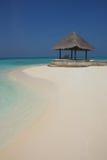 在马尔代夫海滩的树荫处 免版税库存照片
