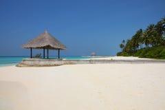 在马尔代夫海滩的树荫处 库存图片