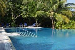 在马尔代夫海滩的游泳池 免版税库存图片