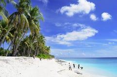 在马尔代夫海滩的生活, 库存图片