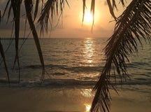 在马尔代夫的日落 免版税图库摄影