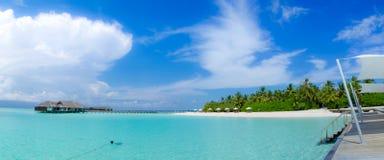 在马尔代夫的美好的热带海滩全景视图 免版税库存照片