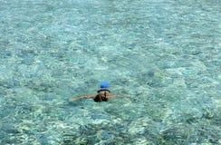 在马尔代夫的Schnorkelling 免版税库存图片