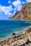 在马德拉岛海岸的峭壁 免版税库存照片