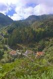 在马德拉岛的海岛上的农村风景 免版税库存照片