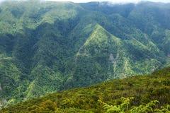 在马德拉岛的海岛的北部的山 免版税库存照片