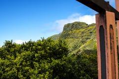 在马德拉岛的海岛的北部的山 库存图片