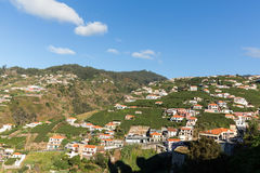 在马德拉岛Wine Company, Estreito de Camara de罗伯斯,马德拉岛的葡萄园的看法, 免版税库存图片