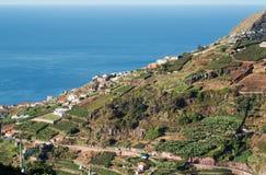 在马德拉岛Wine Company, Estreito de Camara de罗伯斯,马德拉岛的葡萄园的看法 免版税库存图片