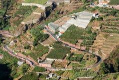 在马德拉岛Wine Company, Estreito de Camara de罗伯斯,马德拉岛的葡萄园的看法 免版税库存照片