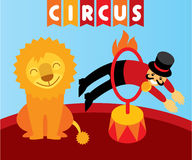 在马戏的跳跃的狮子 动物训练师和狮子 免版税库存照片