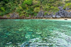 在马掌海岛的珊瑚礁 库存照片