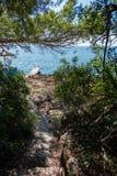 在马略卡海岛上的假日在西班牙 免版税库存照片