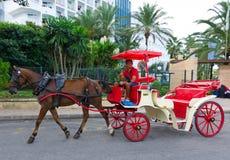 在马略卡的马出租汽车 免版税库存照片