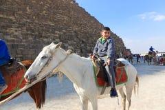 在马的人漫步在金字塔埃及 库存图片