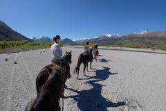 在马的女孩横穿干燥河床在新西兰 免版税库存图片
