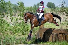 在马的妇女eventer是在须越过的水沟的下落篱芭 免版税库存图片