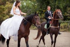 在马的婚礼夫妇 库存照片