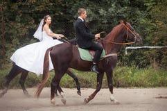 在马的婚礼夫妇 图库摄影