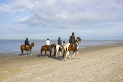 在马的车手在海滩在雷内塞,Netherlan 免版税库存图片