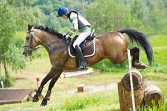 在马的Eventer是克服日志篱芭 免版税图库摄影