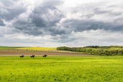 在马背上三个人在惊人的五颜六色的春天风景 免版税库存照片
