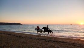 在马背上在日落 免版税库存图片