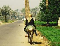 在马背上埃及农夫 图库摄影
