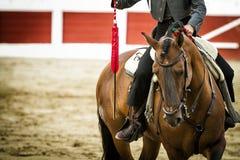 在马背上斗牛士西班牙语 免版税库存图片