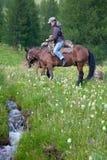 在马背上旅行 库存图片