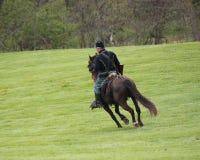 在马背上联合战士 图库摄影