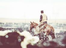 在马背上肉肥育场牛仔在雪的工作 图库摄影