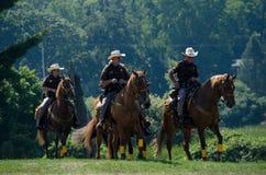 在马背上警察 免版税库存图片