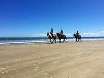 在马背上车手在90英里海滩, Ahipara,新西兰 图库摄影