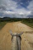 在马背上通过特立尼达的横向 免版税库存照片