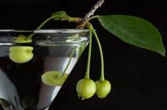 在马蒂尼鸡尾酒玻璃的未成熟的绿色樱桃 库存图片