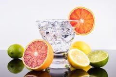 在马蒂尼鸡尾酒玻璃的闪耀的饮料与五颜六色的柑橘 库存照片
