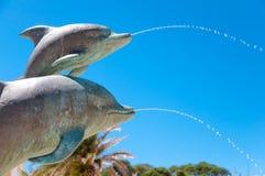 在马里Losinj的海豚 库存照片