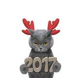 在驯鹿鹿角的逗人喜爱的圣诞老人猫有2017个新年数字的 免版税库存图片