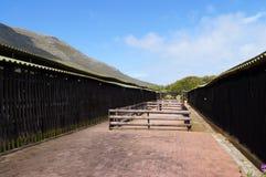 在驼鸟农场,开普敦,南非倒空摊位 库存图片