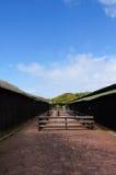 在驼鸟农场,开普敦,南非倒空摊位 图库摄影