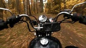 在驾驶在秋天森林的砍刀的车手 股票视频