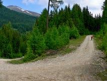 阿尔卑斯从Lessach的奥地利人向湖Prebersee 库存图片
