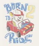 在驾驶汽车动画片的盖帽的凉快的小的熊手拉 库存照片